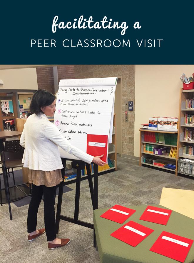 Peer Classroom Visit